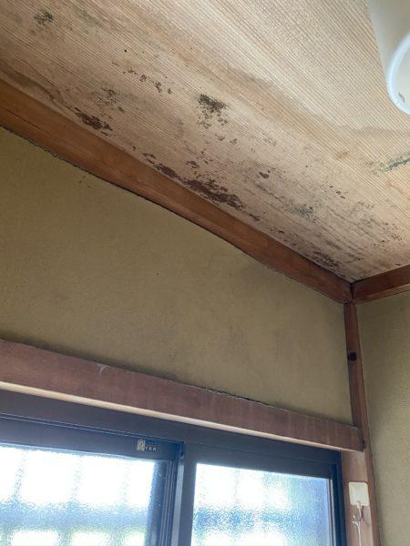 天井だけではなく、壁が膨れています…
